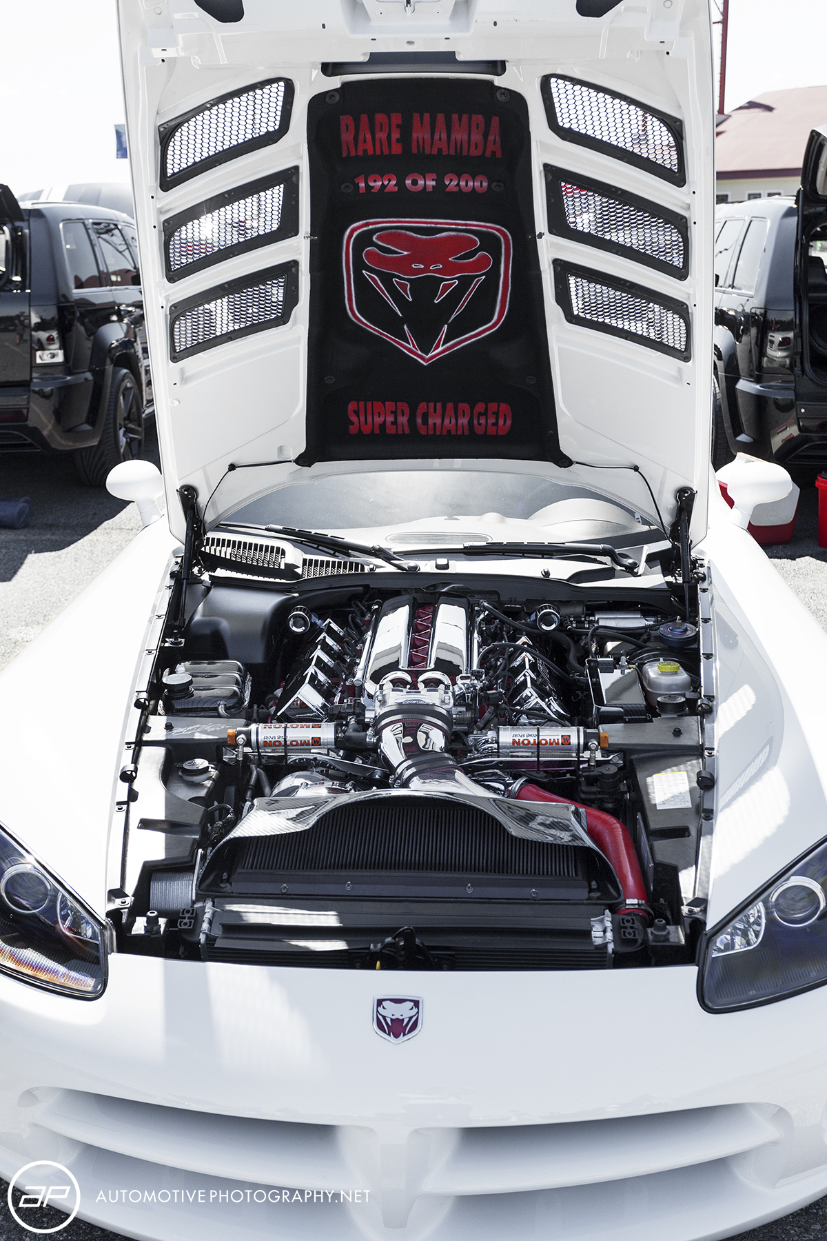 2004 Dodge Viper SRT 10 White Mamba Engine 192